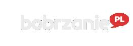 Wielkie ściganie na Węgrzech – bobrzanie.pl – to co istotne w Bolcu, Bolesławiec, informacje, blogi, sport, rozrywka, humor, imprezy, wideo