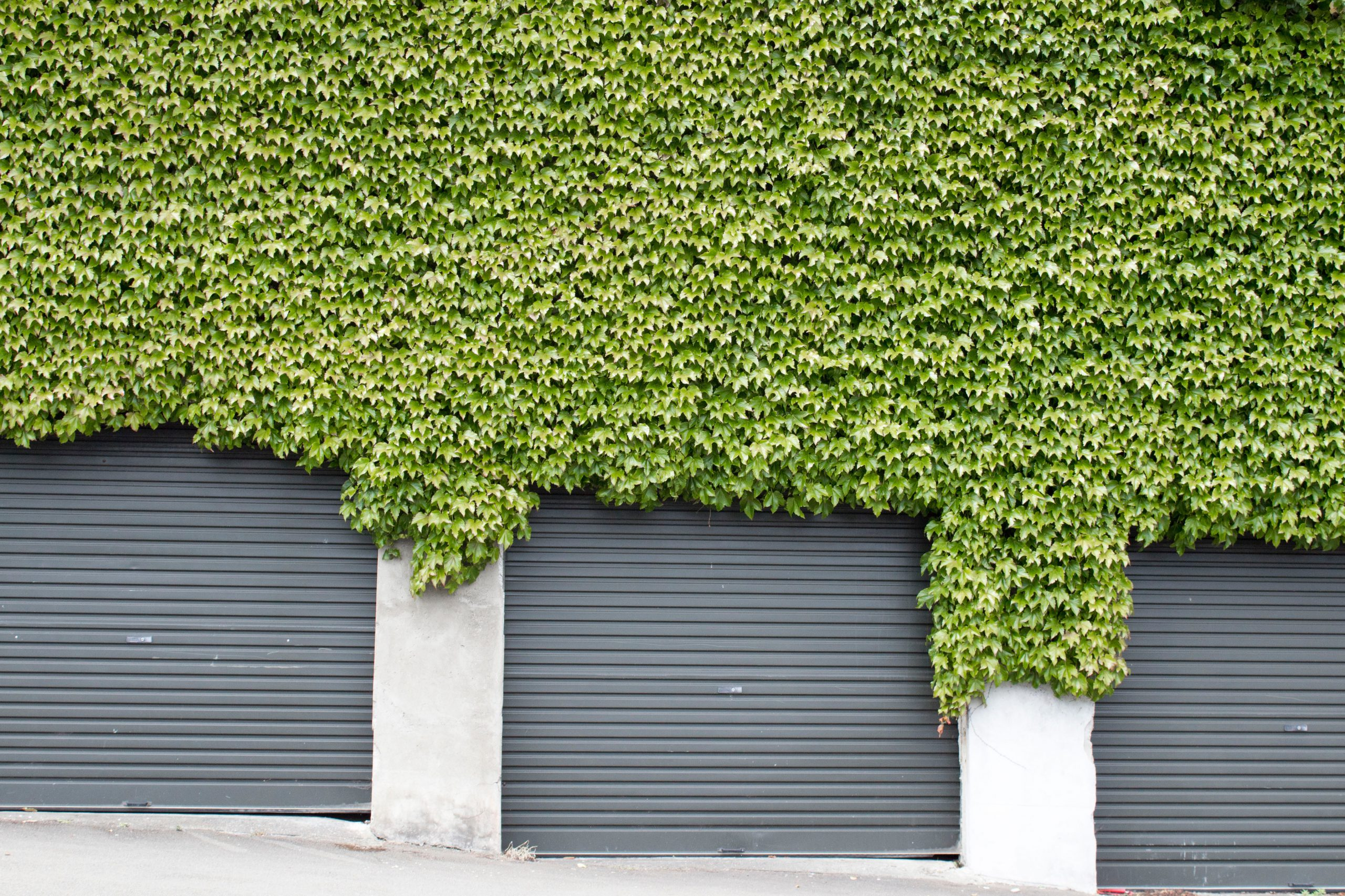 Napęd bramy garażowej – co powinieneś wiedzieć?
