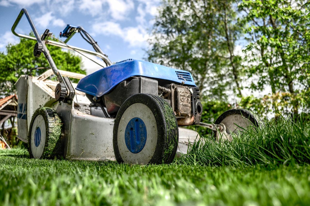 Czym i kiedy powinno się kosić trawnik?